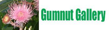 Gumnut Gallery